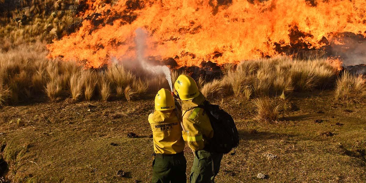 El 95% de los incendios que arrasan Argentina fueron provocados por la acción humana