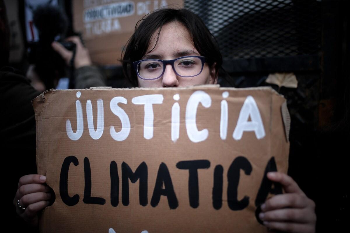 Entre fuego y desmonte, una terrible deforestación avanza en Argentina 😰