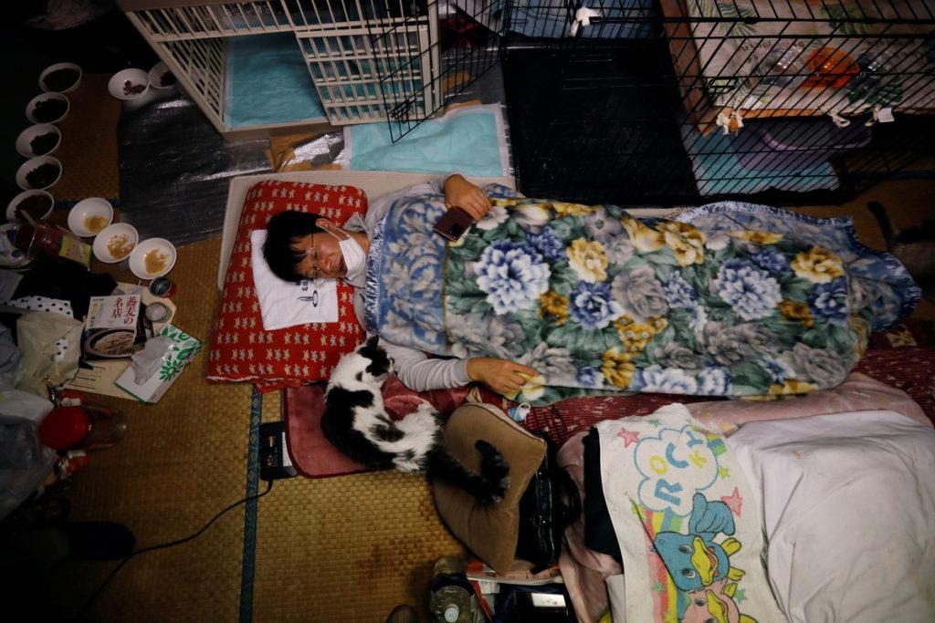 Sakae Kato salva gatitos en Fukushima