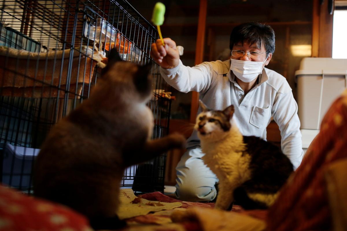 Sakae Kato, el hombre que se quedó en la zona nuclear de Fukushima para salvar gatitos 😻